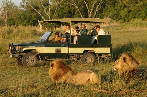 A Safari Holiday in Kenya can be adventurous, memorable and even life changing